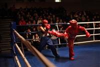 В Туле прошла матчевая встреча звезд кикбоксинга, Фото: 73