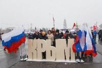 Митинг-концерт в честь годовщины присоединения Крыма к России, Фото: 9