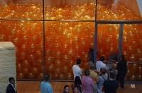 Комната с воздушными шарами, Фото: 9