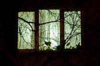 Полуночные окна Тулы: 60 уютных, ламповых фото, Фото: 24