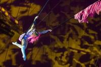 Туляков приглашают на новогоднее представление «Ёлка в цирке», Фото: 10