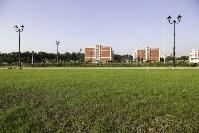 Осмотр стоящегося суворовского училища. 22 августа, Фото: 34