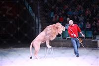 Новая программа в Тульском цирке «Нильские львы». 12 марта 2014, Фото: 12