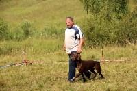 Выставка охотничьих собак под Тулой, Фото: 98