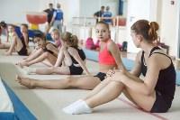 Тренировка гимнасток, Фото: 1