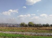 Горит поле напротив ТулСВУ, Фото: 7