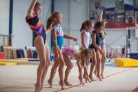 Тульские гимнастки готовятся к первенству России, Фото: 26