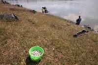 Кубок Тульской области по рыболовному спорту, Фото: 146