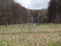 «Тульское землячество» высадило молодые деревья в музее-усадьбе «Дворяниново», Фото: 3