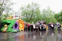 В Центральном парке появилась мемориальная табличка создателю «живого уголка», Фото: 2