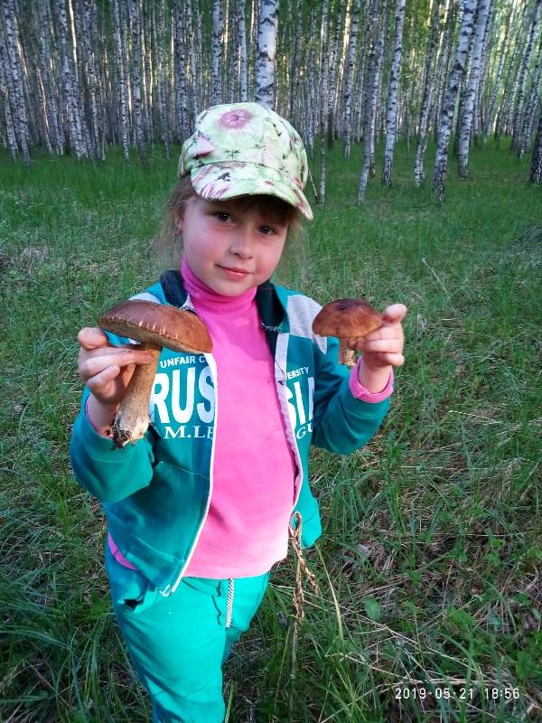 Первые грибочки)))