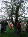 В Туле появилось Пасхальное дерево, Фото: 1