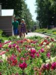 День рождения Комсомольского парка, Фото: 10