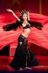 В Туле показали шоу восточных танцев, Фото: 137