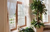 Выбираем пластиковые окна, Фото: 12