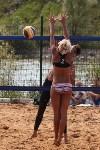 Пляжный волейбол в Барсуках, Фото: 55