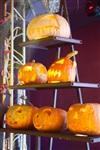 Хэллоуин в «Премьере», Фото: 56