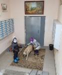 Собака Люся расплачивается за незаконно установленные батареи, Фото: 9