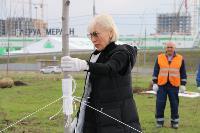 Надежда Школкина и Дмитрий Миляев высадили клены возле Ледового дворца, Фото: 13
