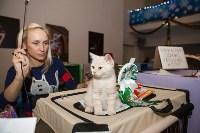 В Туле прошла выставка «Пряничные кошки» , Фото: 67