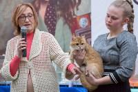 Выставка кошек в Туле, Фото: 54