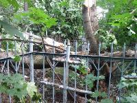 На старинном кладбище в Туле разгулялась стихия, Фото: 4