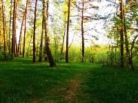 Три места для яркого загородного отдыха в Тульской области, Фото: 1