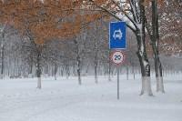 Снежная Тула. 15 ноября 2015, Фото: 30