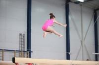 Соревнования по спортивной гимнастике на призы Заслуженных мастеров спорта , Фото: 67