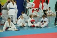 Открытое первенство и чемпионат Тульской области по каратэ (WKF)., Фото: 15