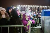 Туляки отметили Старый Новый год ледовым шоу, Фото: 35