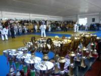 Чемпионат Тульской области по рукопашному бою среди мужчин и женщин, Фото: 4