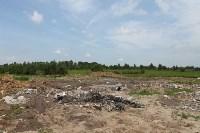В тульском Заречье жители год добиваются ликвидации ядовитой свалки, Фото: 20