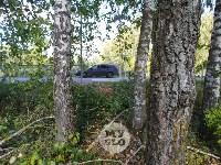 «Вам в кювет, или в деревья?» - загадочный пешеходный переход, Фото: 4