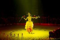 Шоу фонтанов «13 месяцев» в Тульском цирке – подарите себе и близким путевку в сказку!, Фото: 36
