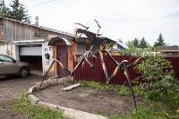 Умелец из Богородицка, Фото: 5