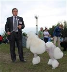 """Всероссийская выставка собак - 20 июля 2013, стадион """"Кировец"""", Фото: 41"""
