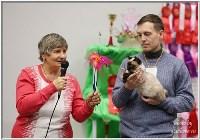 Кошки породы Скиф-той-боб, Фото: 6