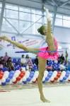 Художественная гимнастика. «Осенний вальс-2015»., Фото: 17