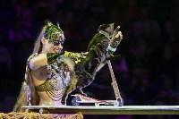 """""""Тайна пирата"""" в Тульском цирке, Фото: 19"""