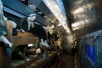 Поезд Победы, Фото: 34