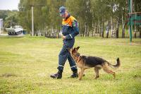 Испытания кинологов в Тульском спасательном центре, Фото: 30