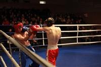 В Туле прошла матчевая встреча звезд кикбоксинга, Фото: 82