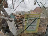 Снос незаконных павильонов в Заречье, Фото: 31