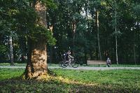 Летний день в богородицком парке, Фото: 48