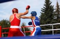 Матчевая встреча по боксу между спортсменами Тулы и Керчи. 13 сентября 2014, Фото: 5