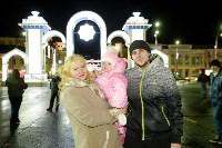 В Туле завершились новогодние гуляния, Фото: 59