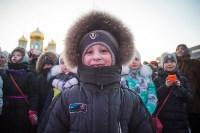 В Тульском кремле открылась новогодняя елка, Фото: 43