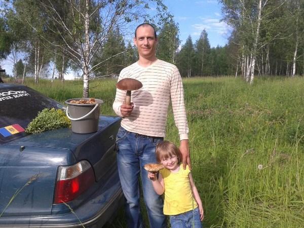 Поход за грибами удался