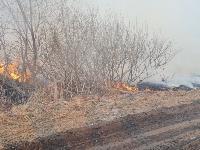 В Федоровке огонь с горящего поля едва не перекинулся на дома, Фото: 3